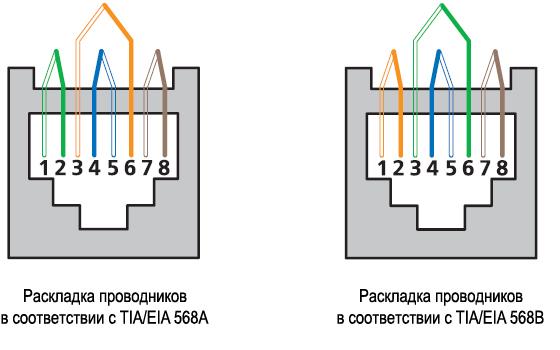 rj-45 коннектор фото